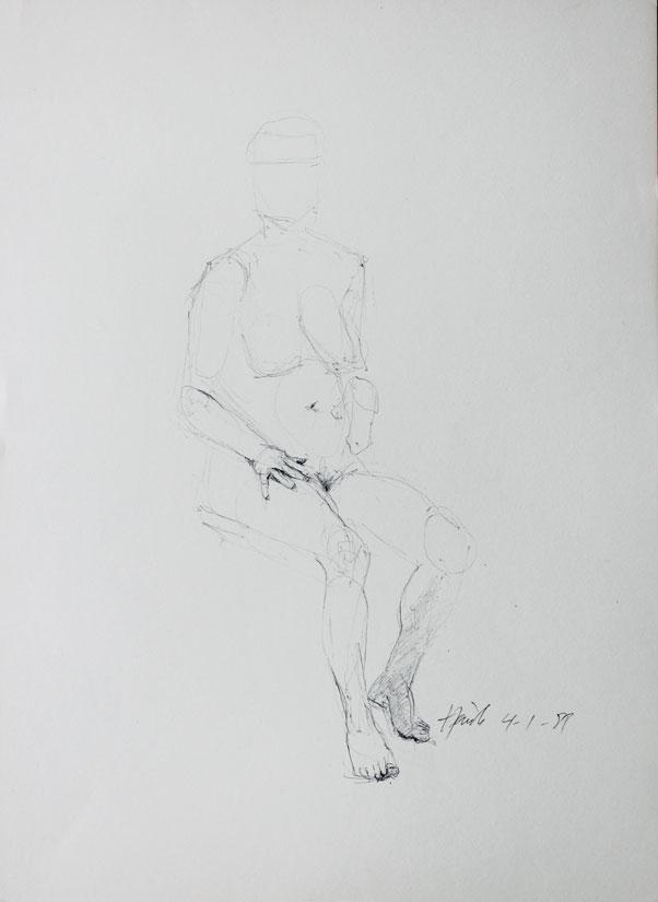 IMG 4630
